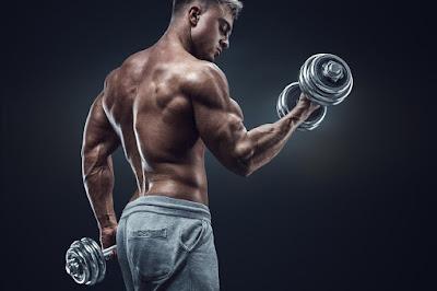 Como obtener musculo gimnasio