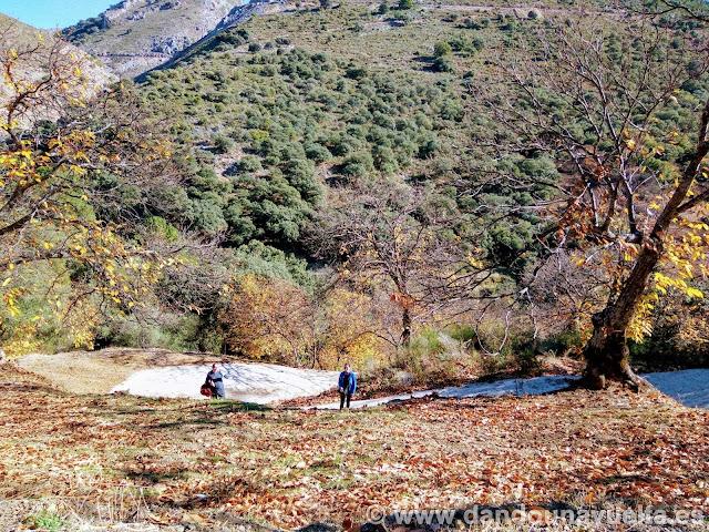 Subida final de hormigón en la ruta de senderismo de los castaños Parauta