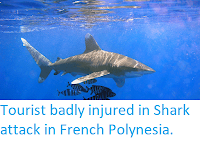 https://sciencythoughts.blogspot.com/2019/10/tourist-badly-imjured-in-shark-attack.html