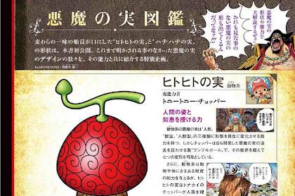 Bentuk Buah Iblis Chopper dan Robin Terungkap! - One Peice Magazine Volume 6