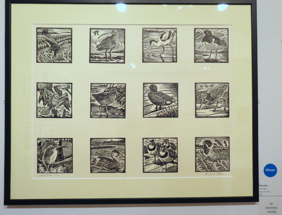 PJC Drawing Award: Coastal Birds by Richard Allen