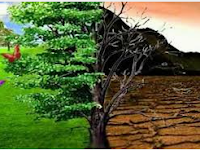 Manfaat Lingkungan Hidup bagi Pembangunan Berkelanjutan
