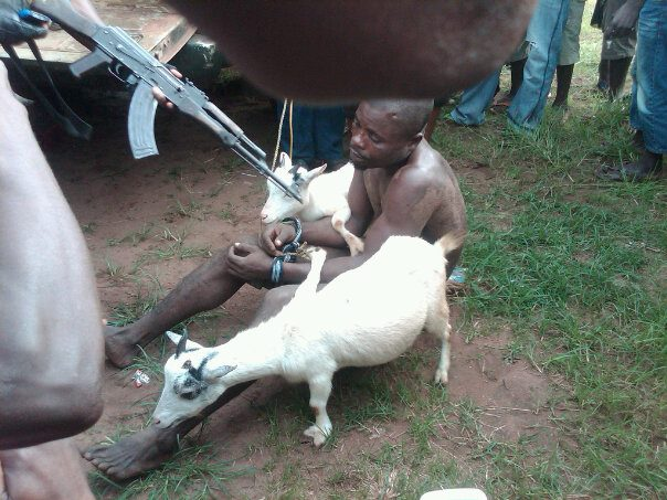 Welcome To Sunnygist Man Strips Naked And Beaten For -4726
