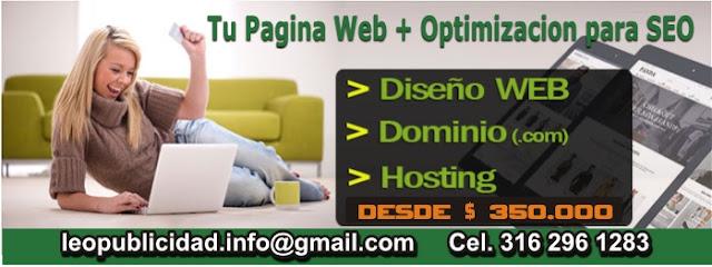 Diseño y desarrollo de paginas web en Manizales Colombia