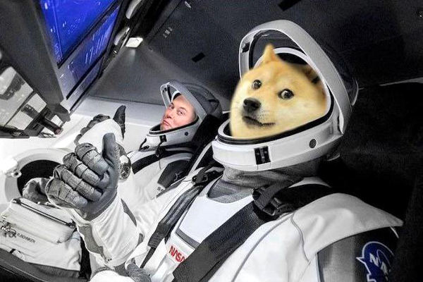 Dogecoin investors apparently wished that Elon Musk and the crypto's canine mascot appeared together on SATURDAY NIGHT LIVE yesterday, like they do in this meme aboard SpaceX's Crew Dragon capsule!