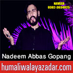 https://aliwalayazadar.blogspot.com/2020/08/nadeem-abbas-gopang-nohay-2021.html
