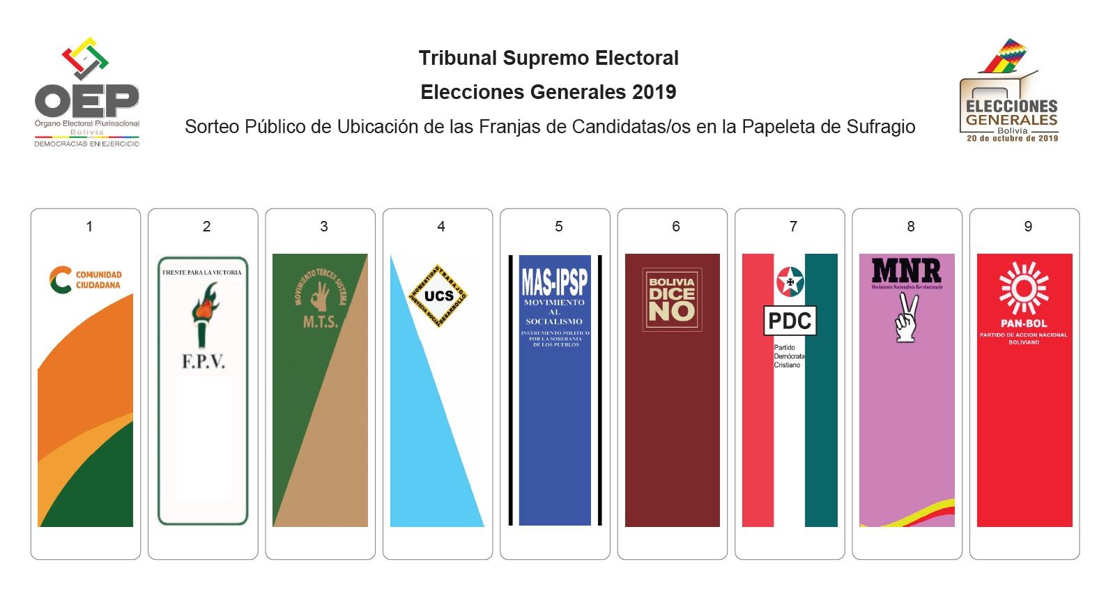 Nueve frentes se disputarán espacios de poder en las elecciones del 20 de octubre / TSE