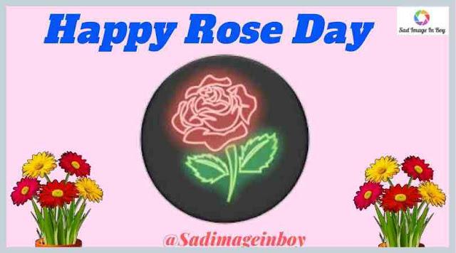 Rose Day Images | images for rose day, rose day images download, happy rose day images hd