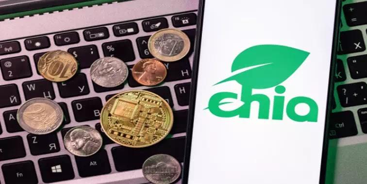 Apa Itu Koin Chia dan Bagaimana Cara Menambangnya di PC Windows 10