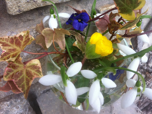 In a Vase on Monday - colours in February