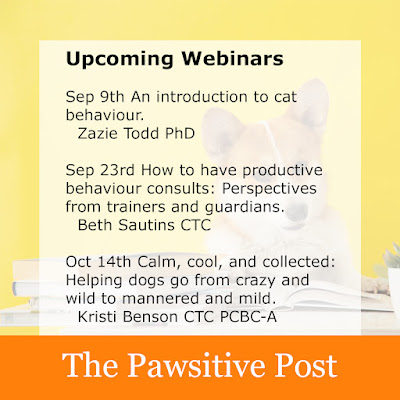 A list of upcoming webinars on dogs and cats at The Pawsitive Post