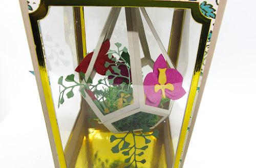 Terrarium gift box