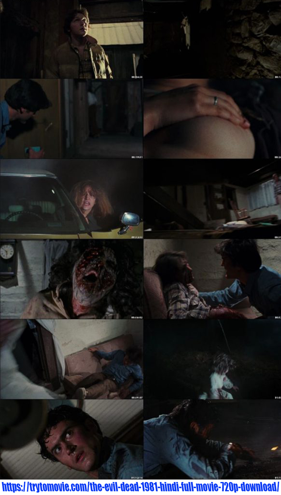 The Evil Dead 1981 Hindi Full Movie 720p Download