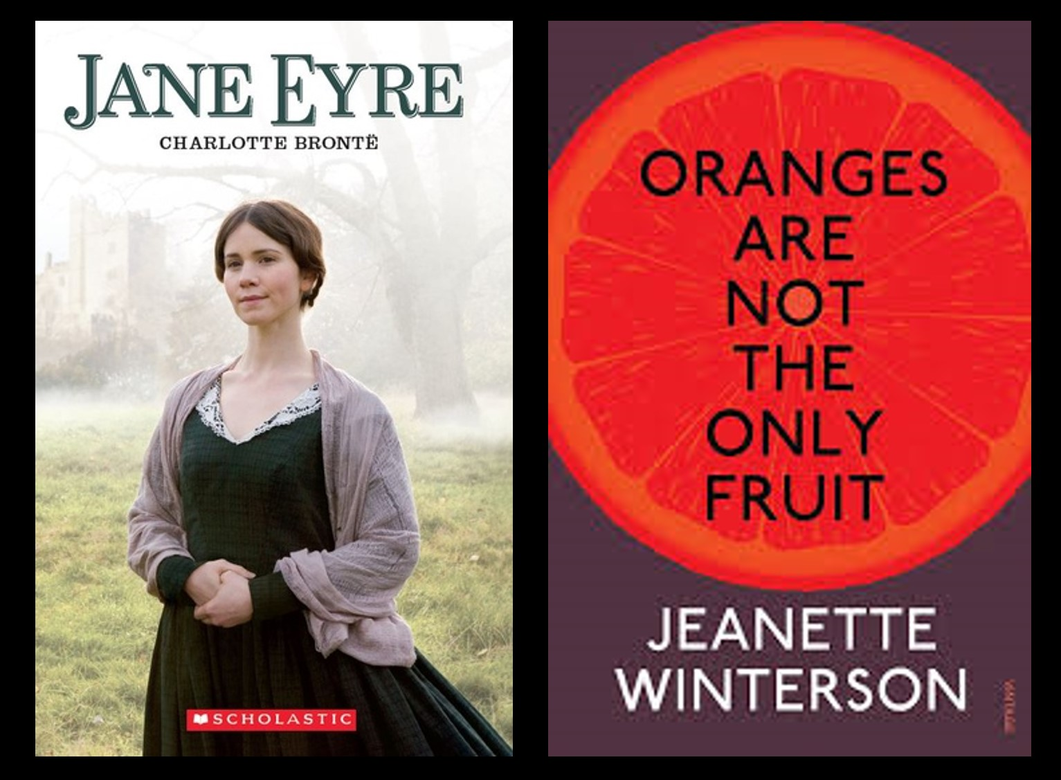 Oranges Are Not The Only Fruit Book