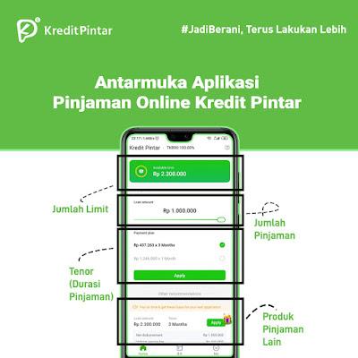 Antarmuka Aplikasi Kredit Pintar
