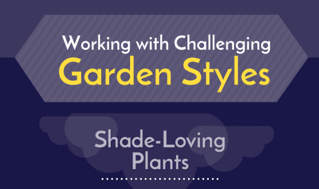 Working With Challenging Garden Styles