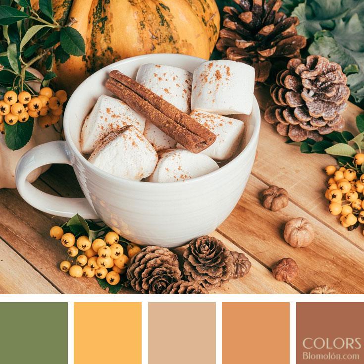 variedad_en_color_paletas_de_colores_93