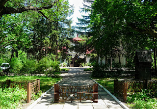 Графское. Великоанадольский музей леса