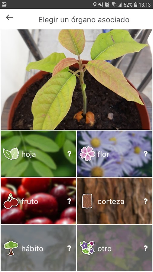 selección de parte a comparar en el recurso vegetal