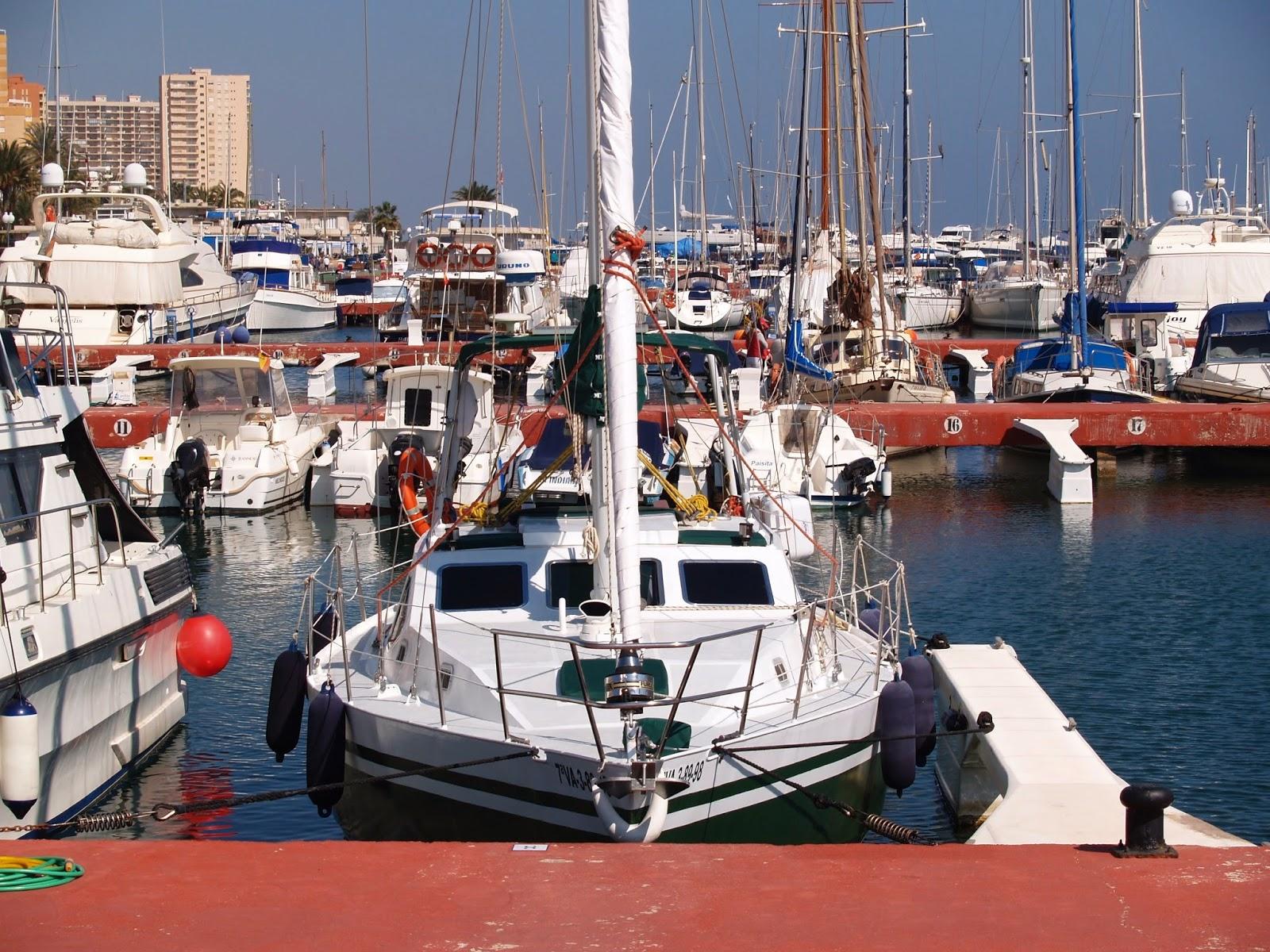 velero simbad  veleros en venta