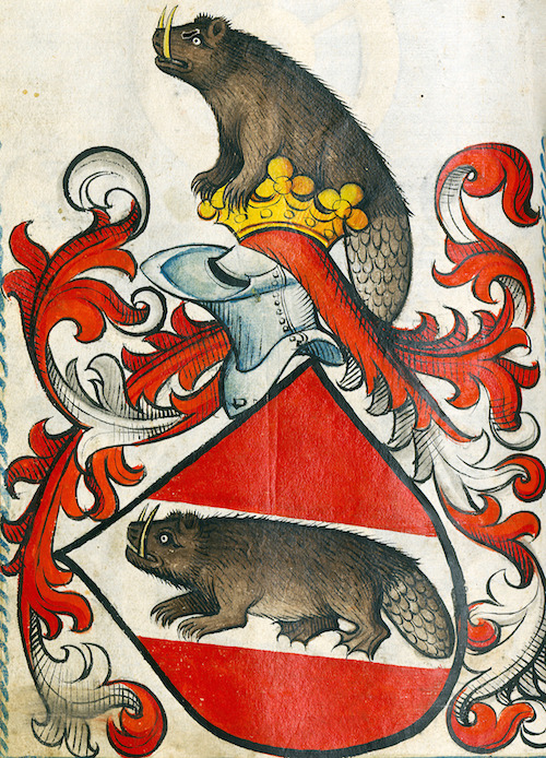 Medieval heraldic beavers with sabre teeth over red shield
