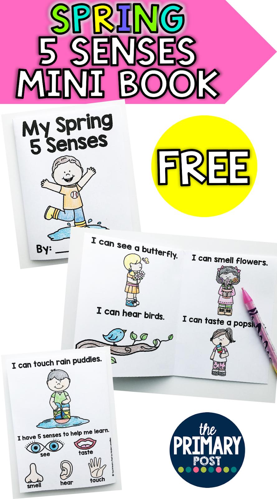 spring 5 senses mini book freebie the primary post