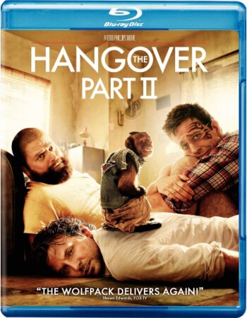 The Hangover Part 2 (2011) Dual Audio Hindi 480p BluRay 300MB ESubs Movie Download