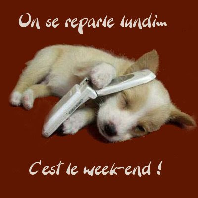 image drole week end