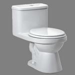 toilet in spanish
