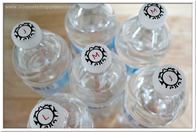 Monogram Water Bottle Labels for Road Trip | 3 Garnets & 2 Sapphires
