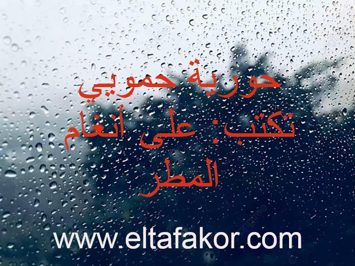 حورية حمويي تكتب: على أنغام المطر