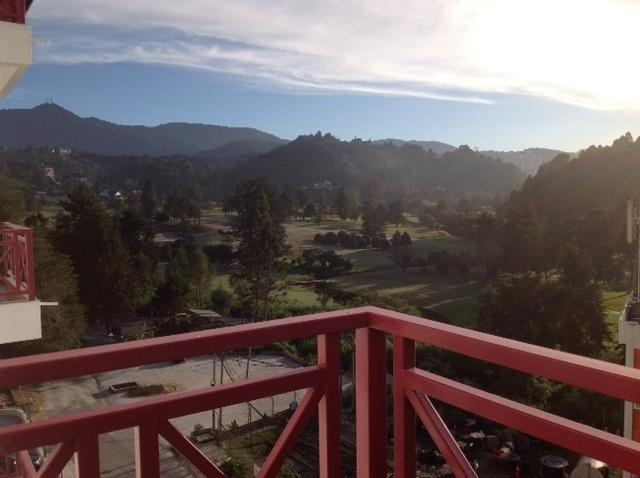 12 Homestay Terbaik Di Cameron Highland Menjadi Pilihan Pengunjung
