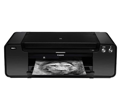 Professional Inkjet Printer is the quintessential tool for the professional person lensman  Canon PIXMA PRO-1 Driver Downloads