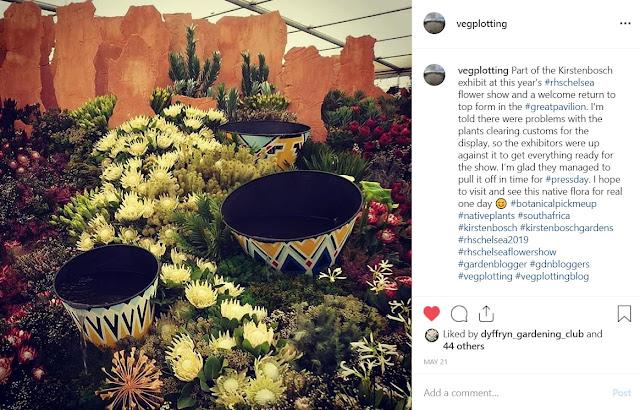 Kirstenbosch exhibit in the Great Pavilion