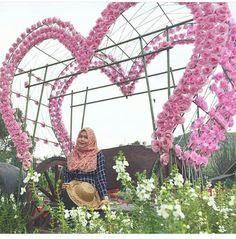 taman-bunga-begonia-lembang-kebun