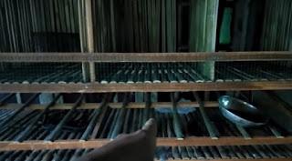Kandang Kelinci Dari Bambu Hemat