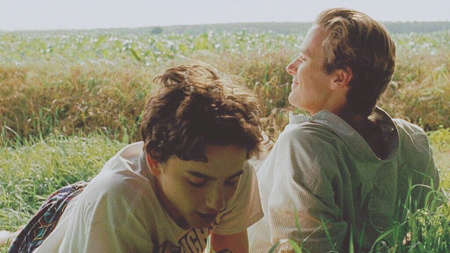 VIFF 2017 | Armie Hammer Timothée Chalamet Luca Guadagnino | Call Me by Your Name