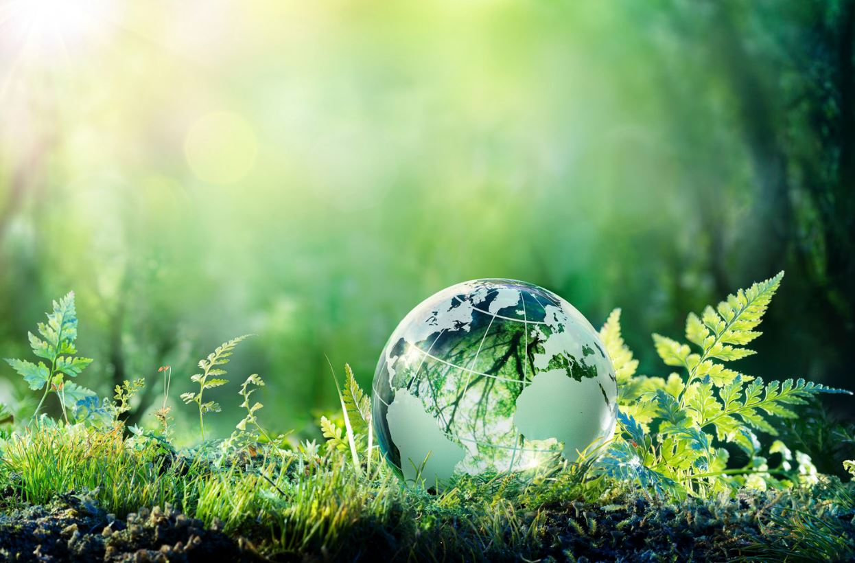 السعودية تلعب دوراً قيادياً في تنفيذ خطط التنمية المستدامة لعام 2030