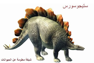 الديناصورات,انقراض الديناصورات,ديناصورات,انقراض,ديناصور,الديناصور,سبب انقراض الديناصورات,أنواع الديناصورات,متى انقرضت الديناصورات,انقراض الديناصورات وثائقي,متى عاشت الديناصورات,الديناصورات الصغيرة