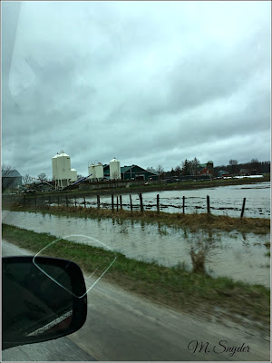April 26, 2019 Driving to Owen Sound past flooded fields.