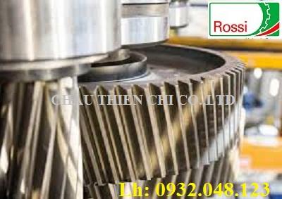 Phụ kiện hộp số ROSSI cho ngành khai thác mỏ