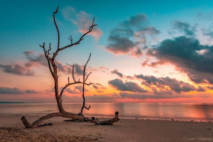 Solitude in paradise