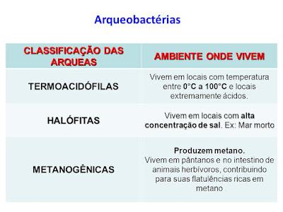 Arqueobactérias.