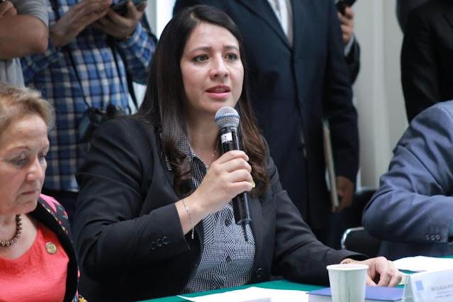 Claudia Reyes pide armonizar ley general de partidos políticos para mantener su certeza jurídica