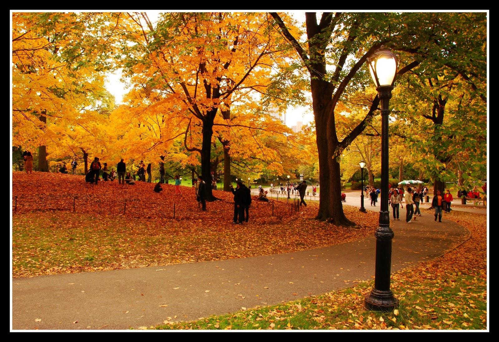 Central Park Fall Wallpaper | 3132 views 785 downloads 2 ...  |Autumn Central Park Screensavers