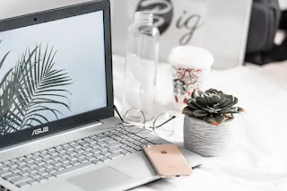 ASUS ZenBook 14 Review 2020