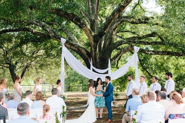 wedding ceremony under big oak tree