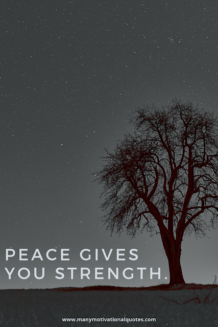 Why is peace is so important to have in your life?