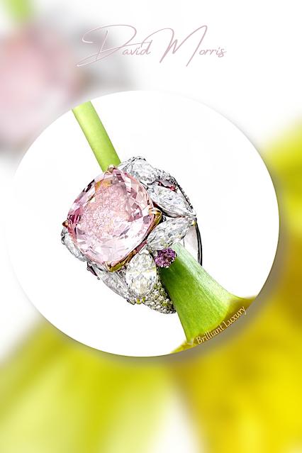 ♦David Morris Padparadscha sapphire pink diamonds ring #jewelry #brilliantluxury