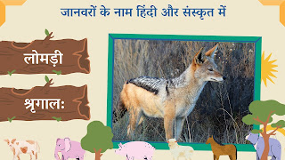 Vixen name in sanskrit and hindi with images